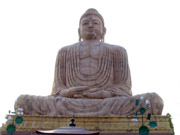 mahabodhi