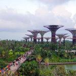 Tour Du Lịch: Singapore – Sentosa – Genting – Kuala Lumpur – 6 Ngày