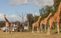 Vườn thú Werribee Open Range Zoo