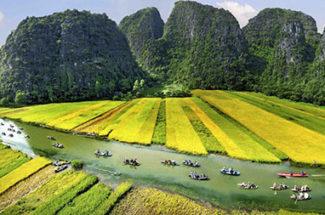 Tour Du Xuân: Hà Nội – Hoa Lư – Tam Cốc – 1 Ngày