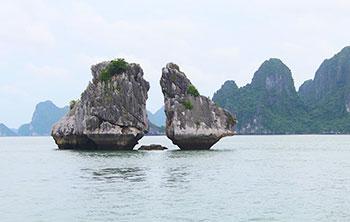 Hòn Gà Trọi - Vịnh Hạ Long