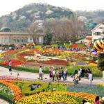Tour Du Lịch Hàn Quốc: Hà Nội – Seoul – Jeju – Nami – 6 Ngày