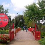 Tour Du Lịch: Tp. Hồ Chí Minh – Nha Trang – Đà Lạt – 5 Ngày