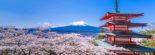 Du Lịch Nhật Bản mùa anh đào