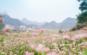 Cột cờ Lũng Cú từ vườn hoa Tam Giác Mạch