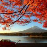 Tour Du Lịch Mùa Lá Đỏ Nhật Bản: Nagoya – Nara – Osaka – Kyoto – Núi Phú Sỹ – Tokyo – 6 Ngày