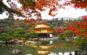 Chùa Vàng – Golden Pavillion Temple