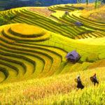 Top 7 địa điểm du lịch ở Sa Pa nổi tiếng hấp dẫn